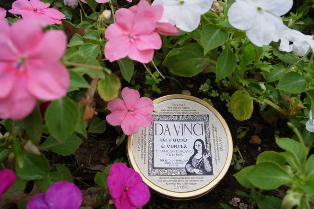 Dan Tabacco Da Vinci(ダビンチ)