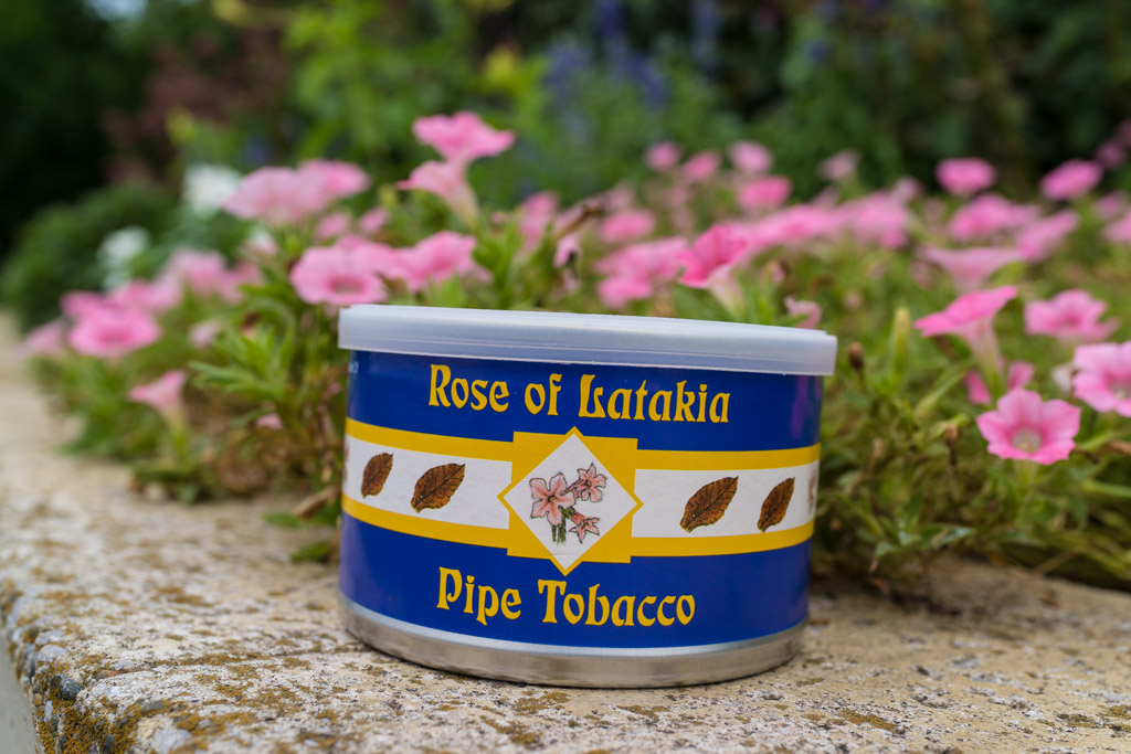 McClelland Rose of Latakia (マクレーランド ローズオブラタキア)